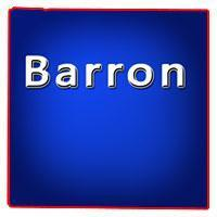 Barron County Wisconsin Bars for Sale