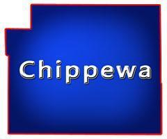 Chippewa County Wisconsin Bars for Sale
