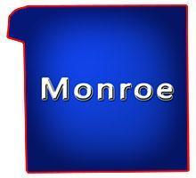 Monroe County Wisconsin Bars for Sale