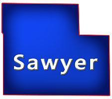 Sawyer County Wisconsin Bars for Sale